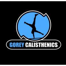 Calisthenics - Bodyweight Fitness + Gymnastics